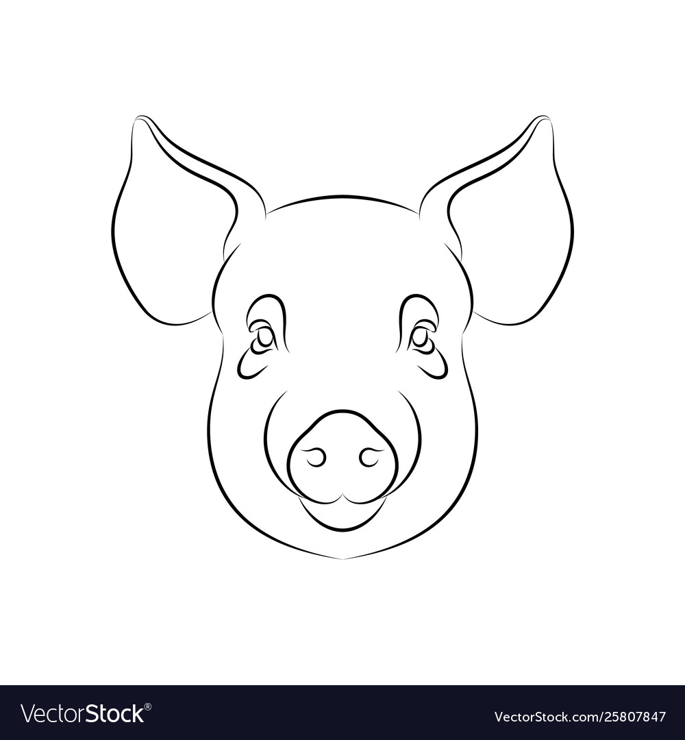 Outline stylized pig portrait on white