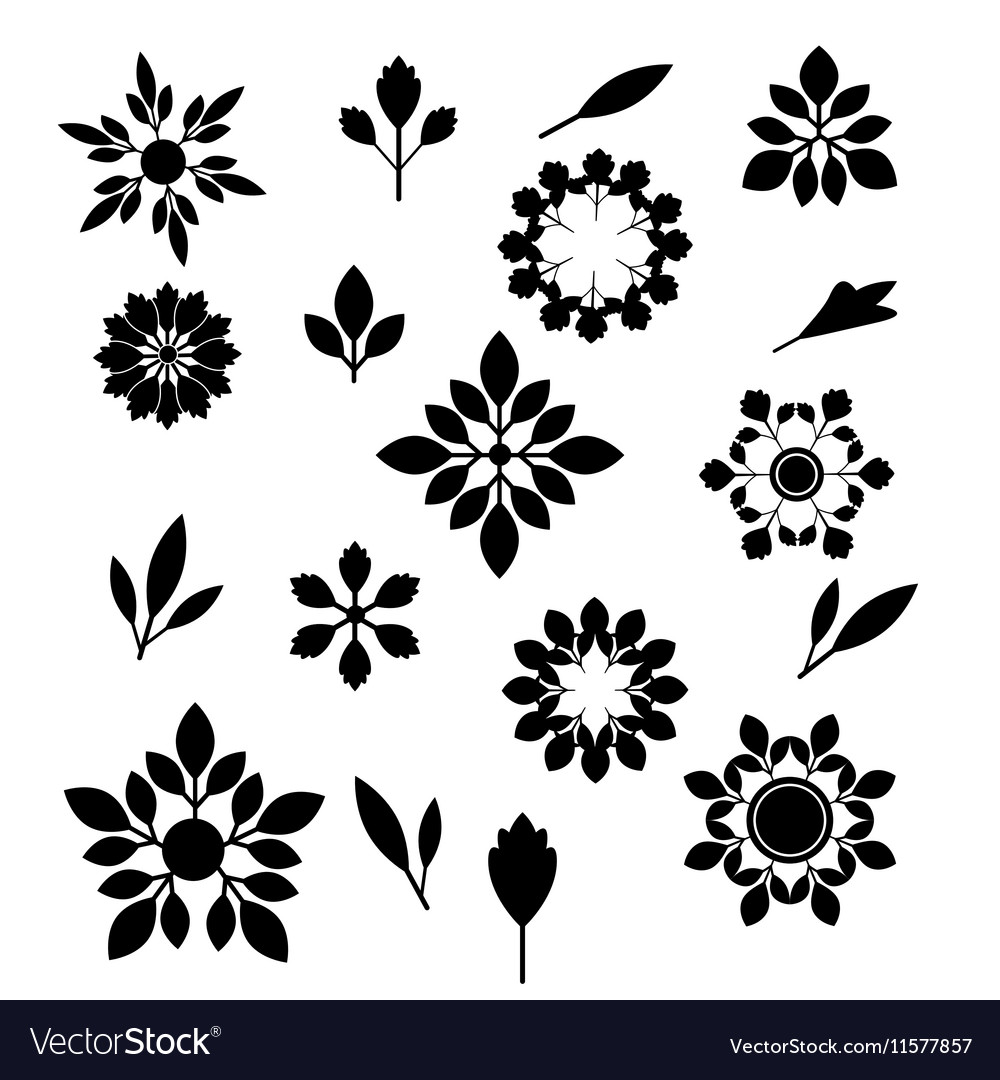 Flower and leaves silhouettes set