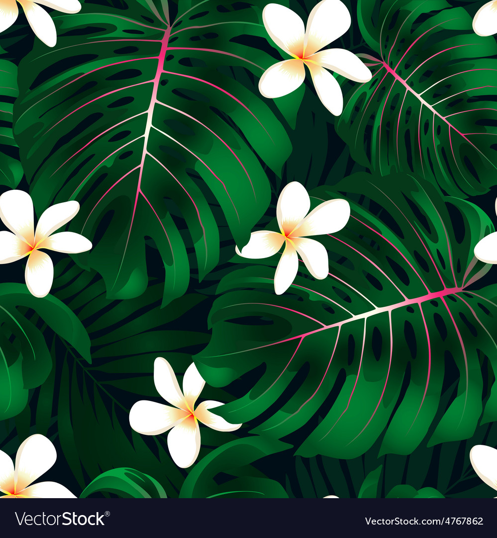 Tropical Monstera floral seamless pattern vector image