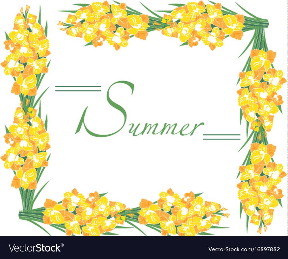 Frame summer gladioli