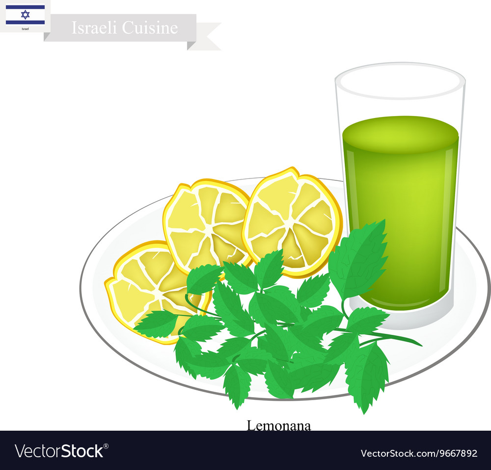 Lemonana or in Israeli Frozen Lemonade with Mint vector image