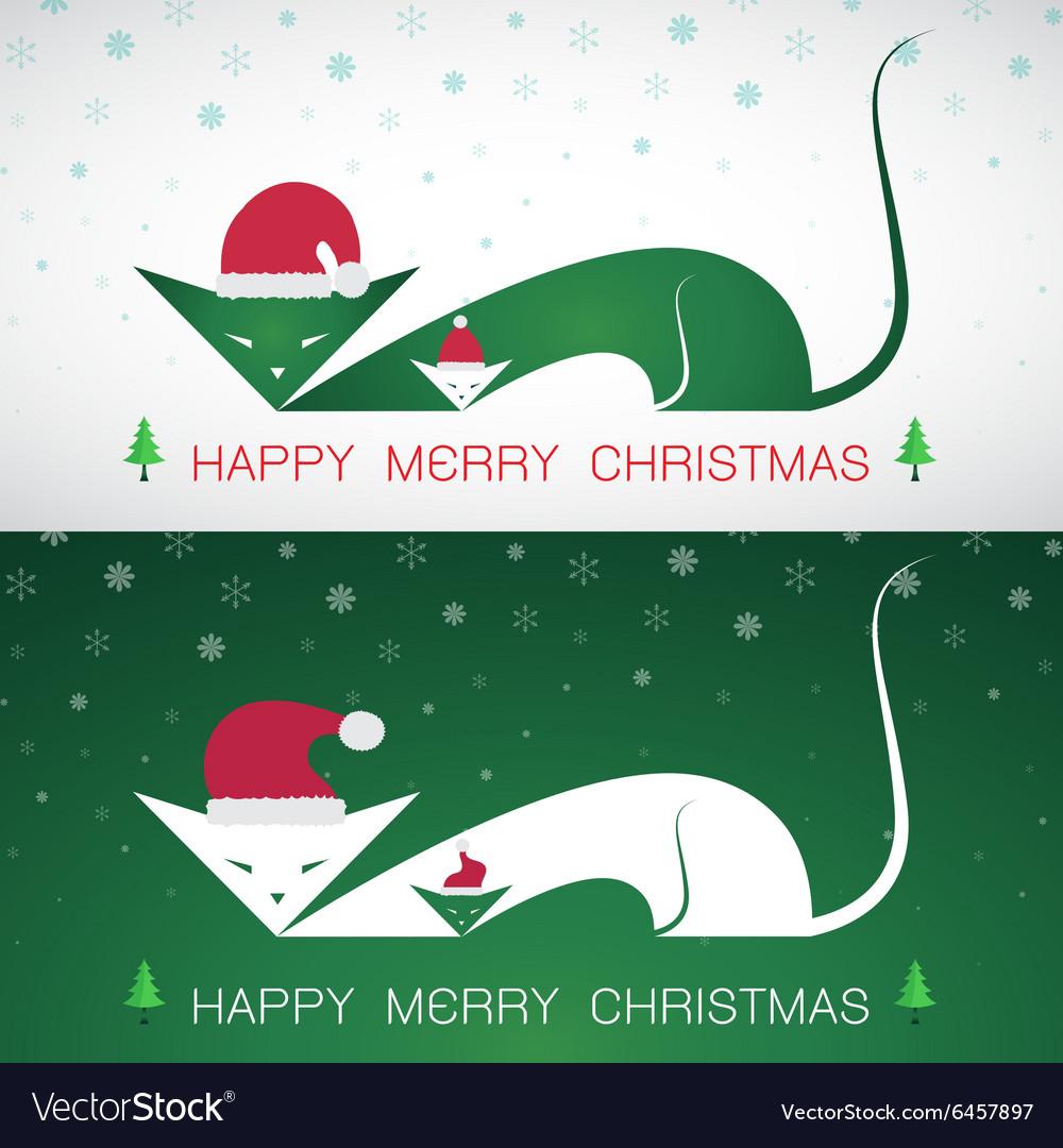 Cat merry christmas