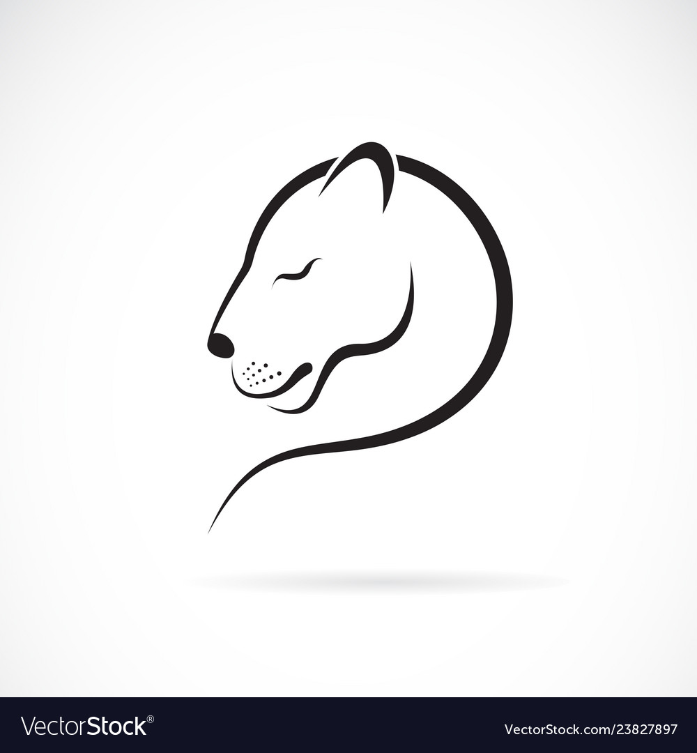 Female lion design on white background wild