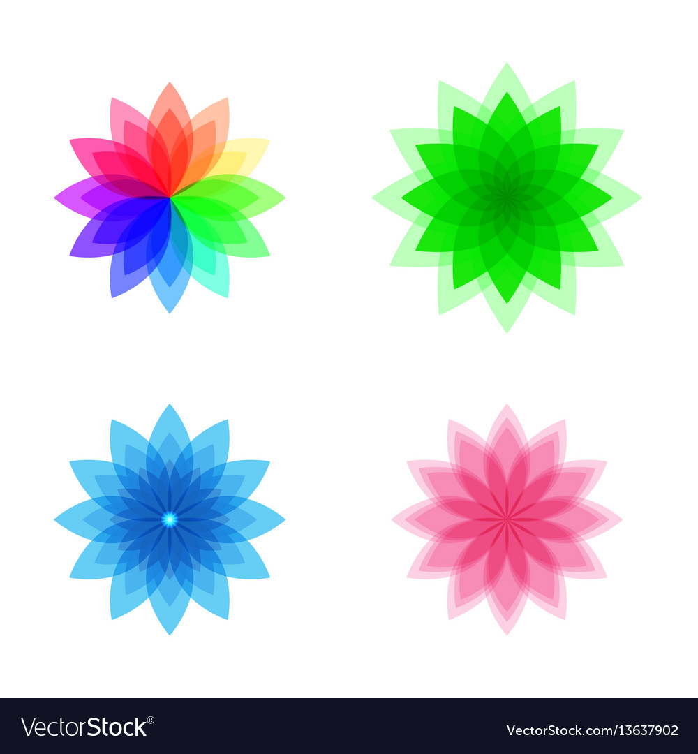 Colorful stylized flower set vector image