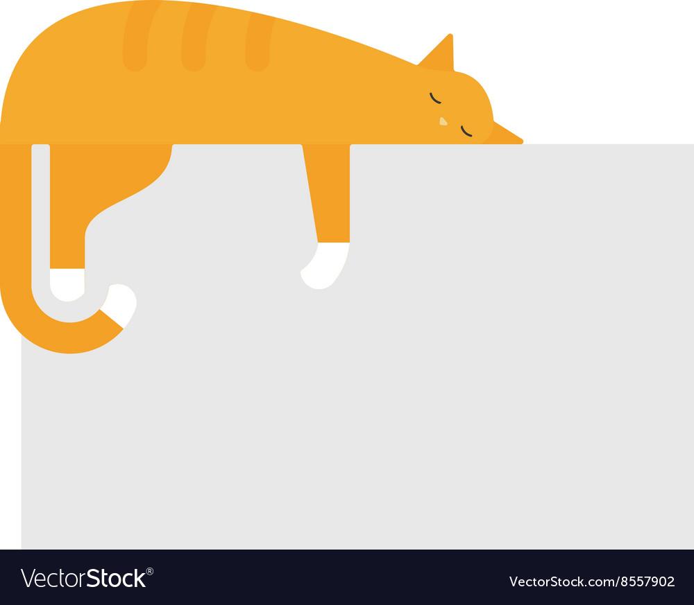 Cute cat sleeping on platform house feline
