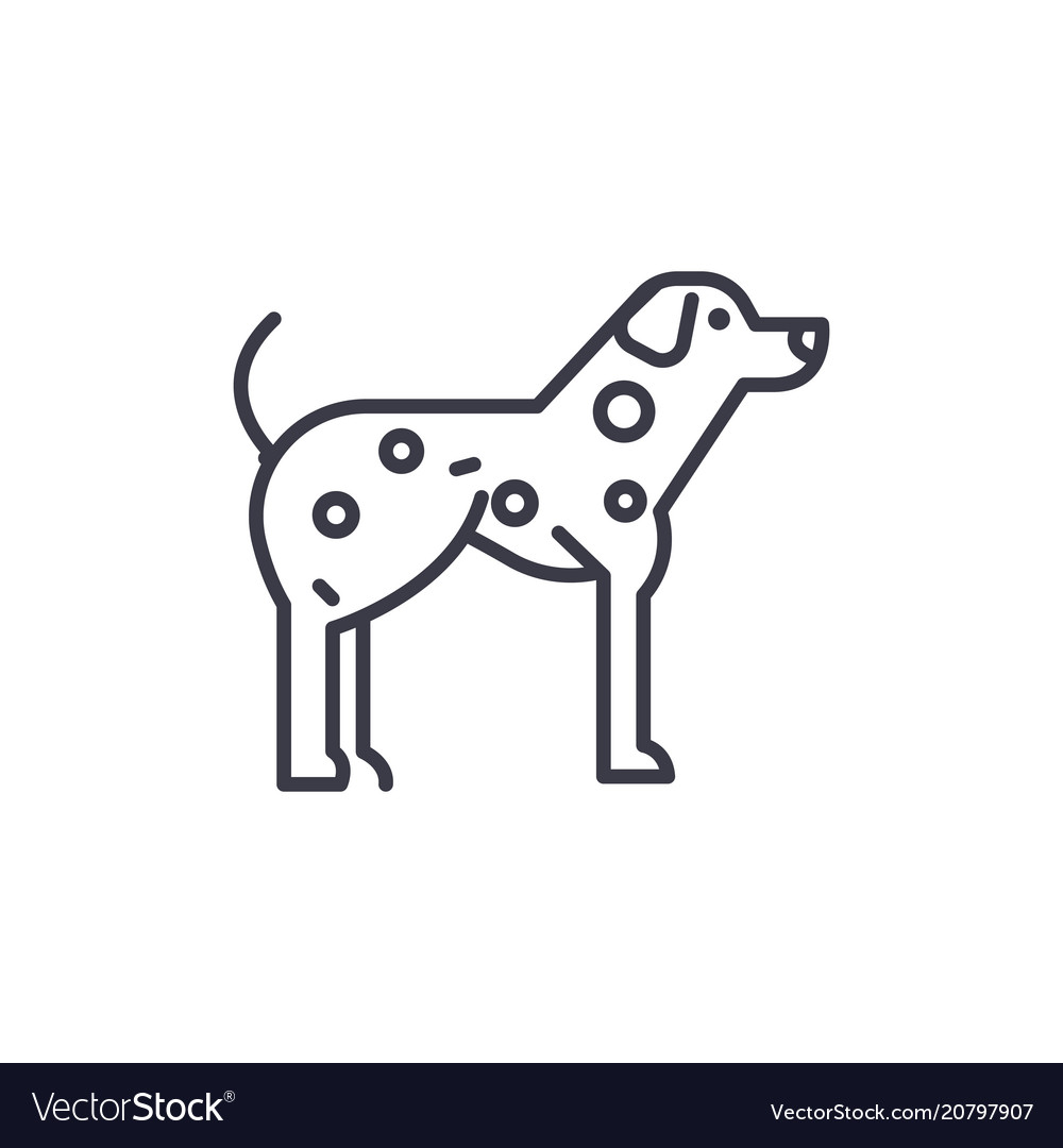 Dalmatian line icon sign o vector image