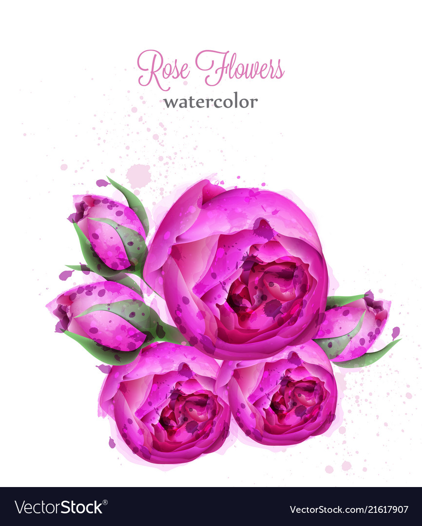 Rose flowers watercolor wreath card