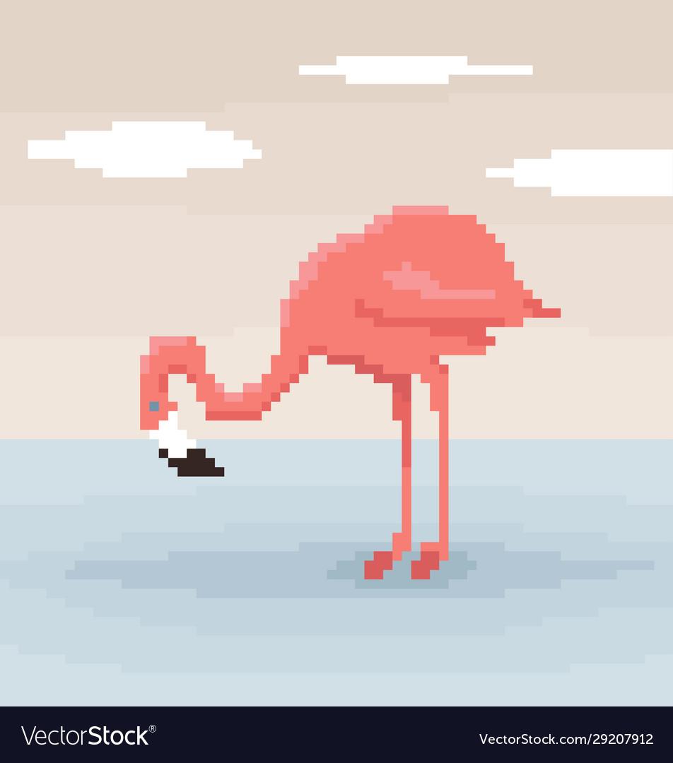 Pixel art flamingo is standing in water