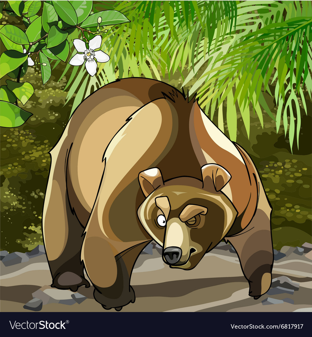 Cartoon big bear in the woods that is suspected vector image