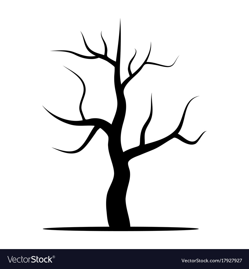 Tree Without Leaves Royalty Free Vector Image