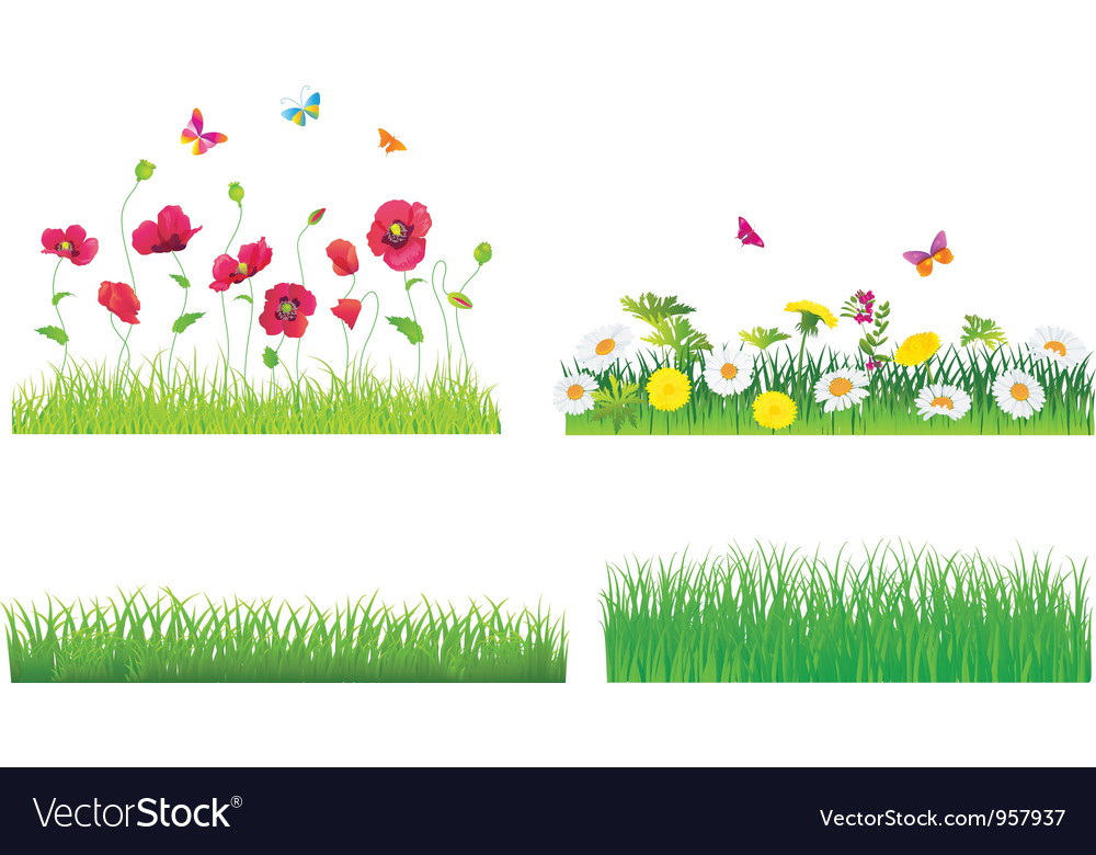 The Green Grass and Flowers Set