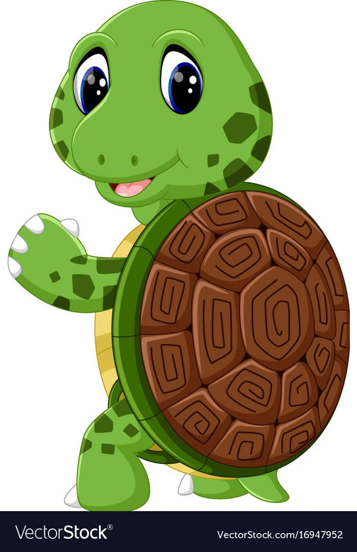 cute turtle cartoon royalty free vector image vectorstock