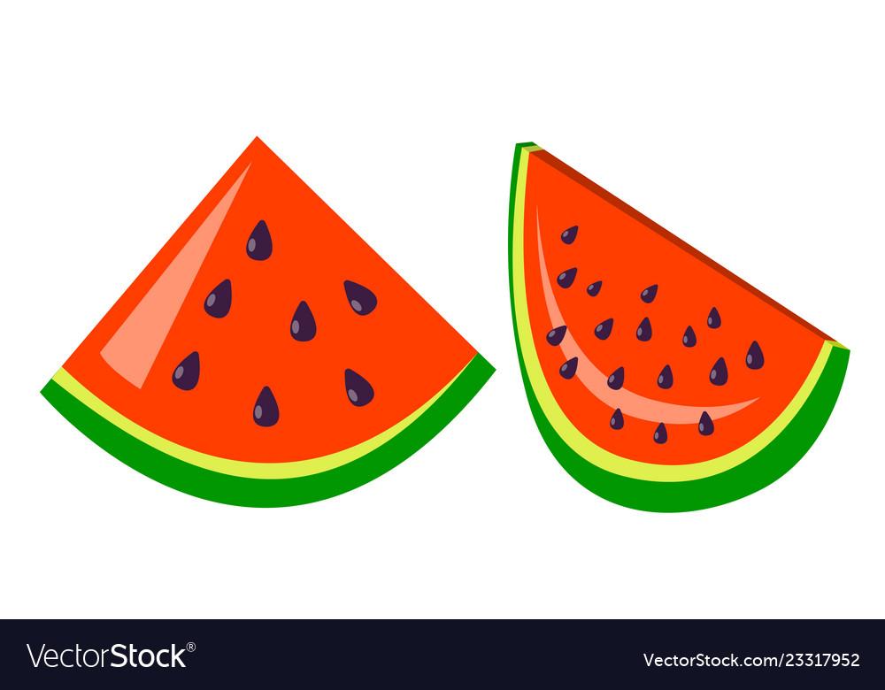 Watermelon icon tasty fruit fresh healthy