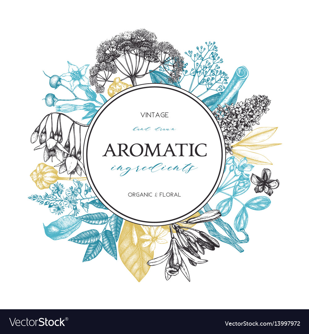 Aromatic and medicinal plant design