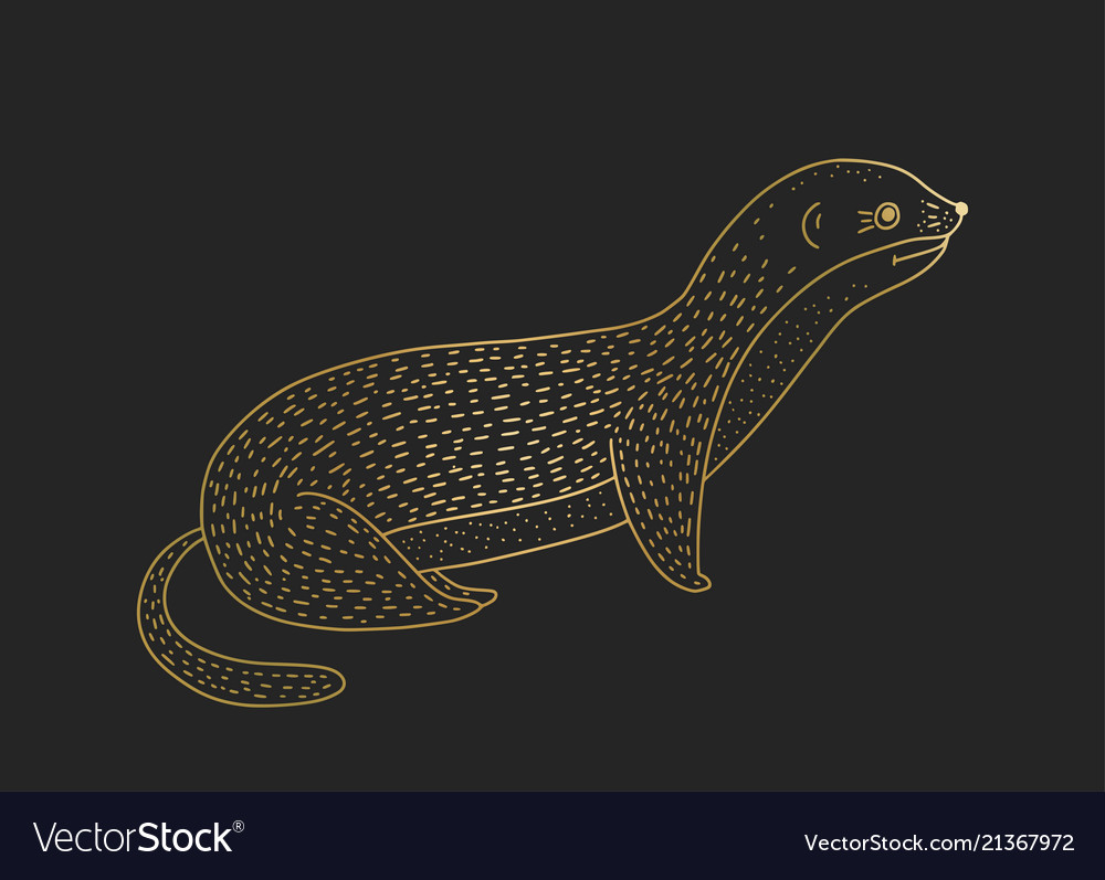 Outline golden weasel icon on a black