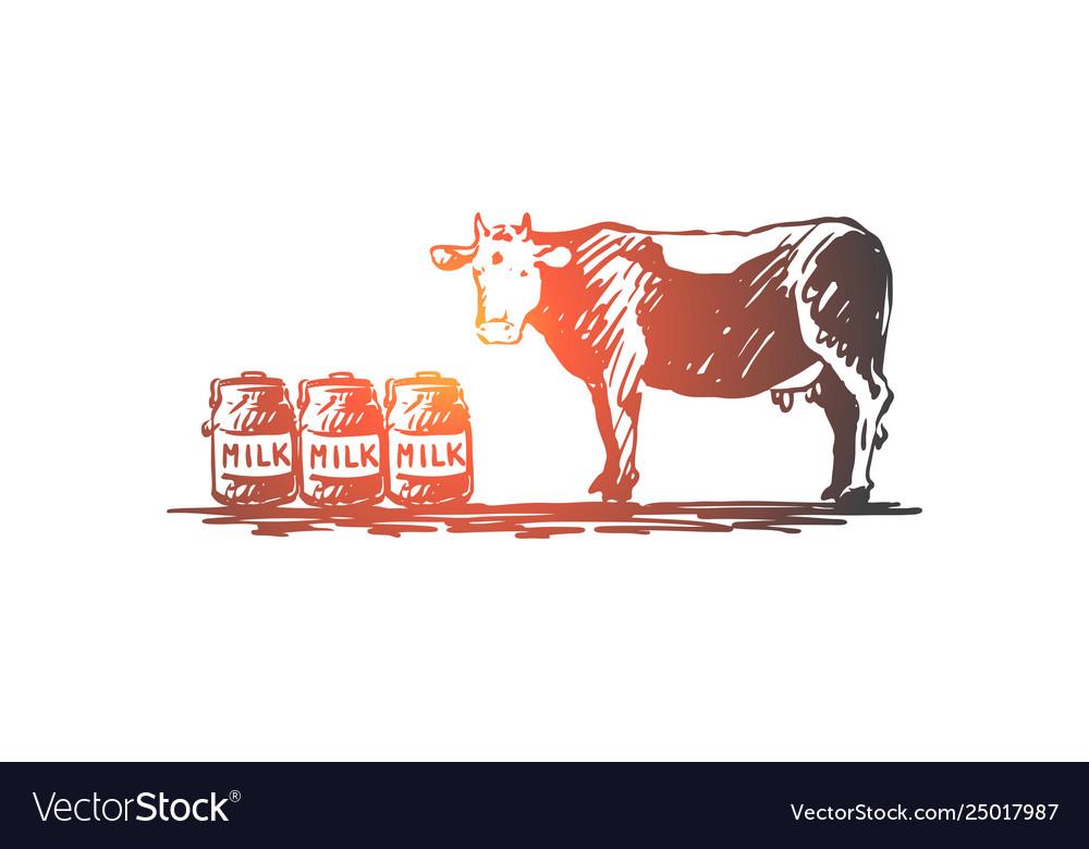 Cow milk cheese farm organic concept