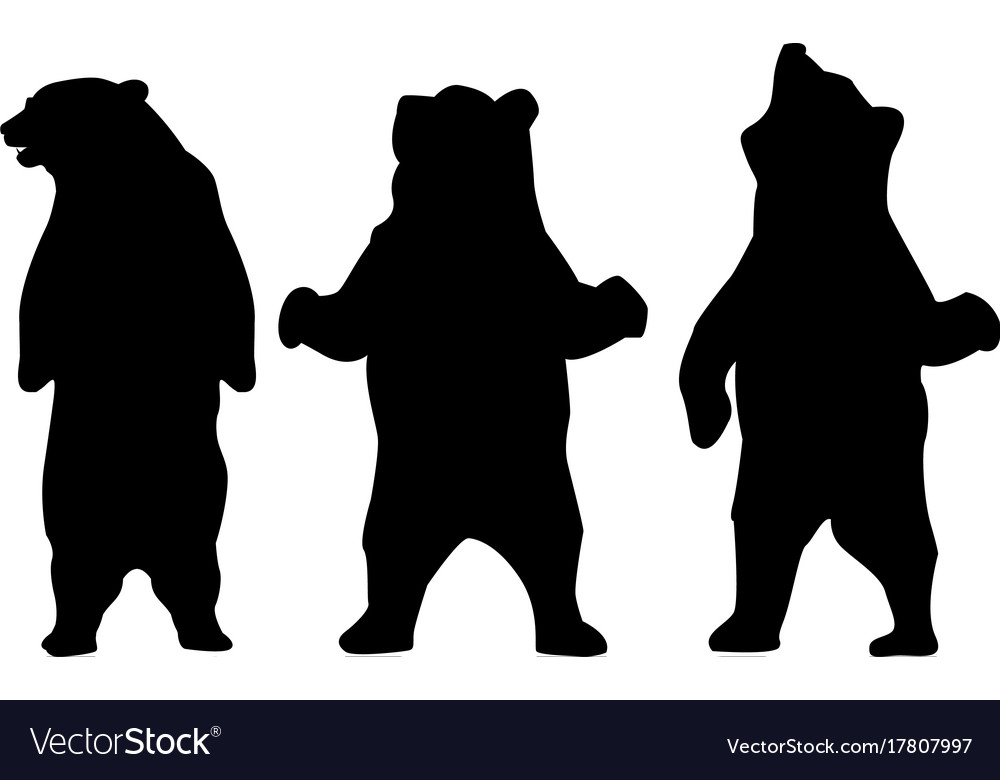Bear silhouette animal vector image