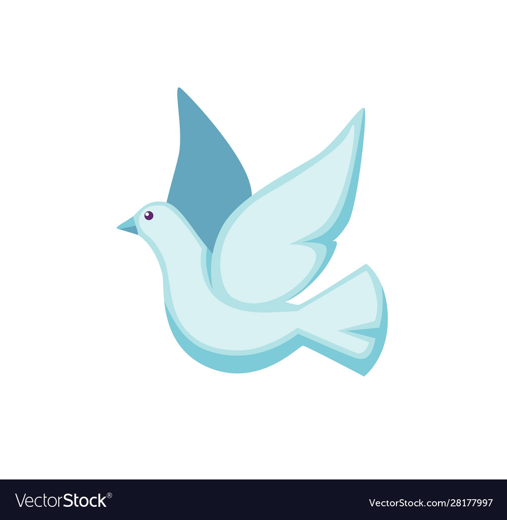 White pigeon flat cute