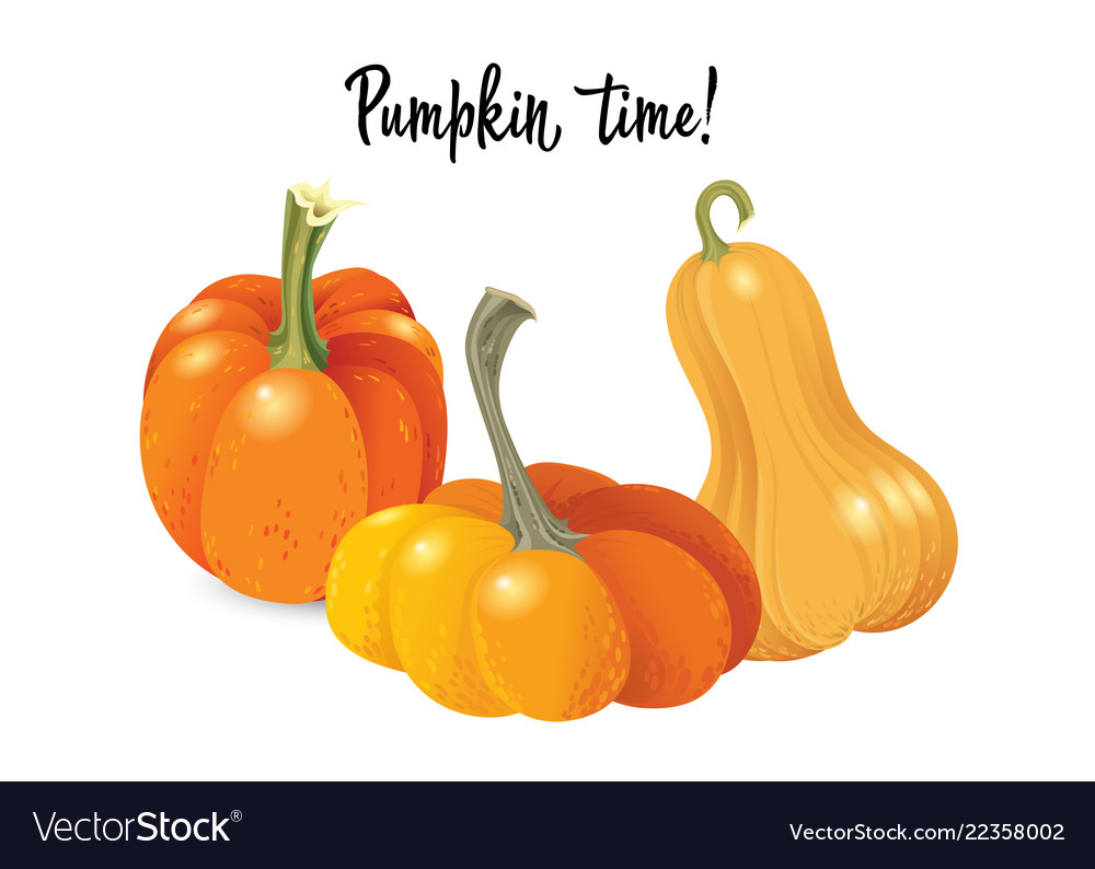 Halloween pumpkin set different shapes and sizes