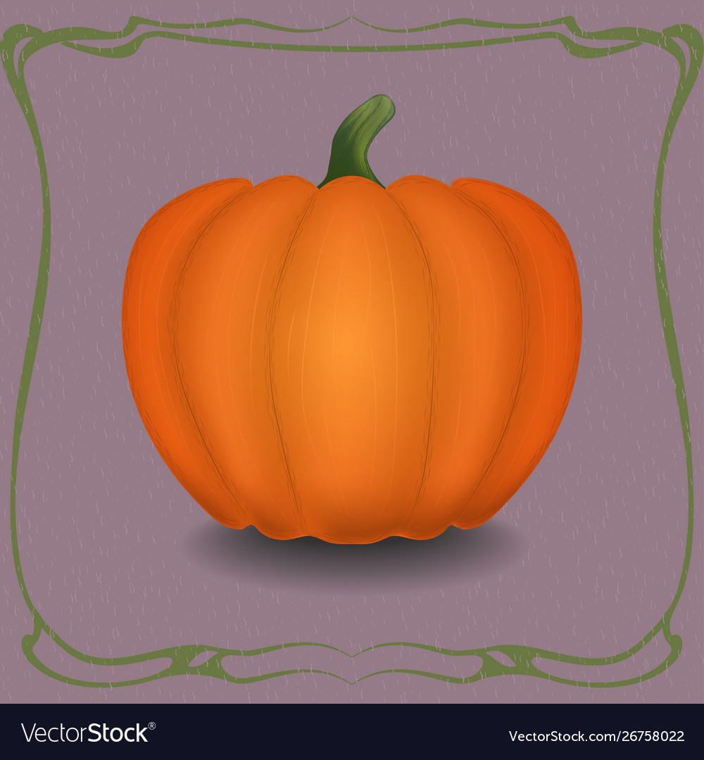 Orange pumpkin in vintage frame