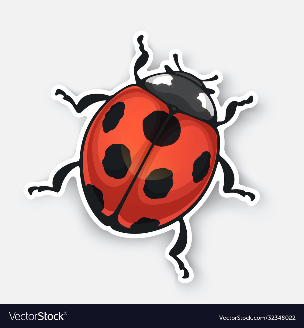 Sticker ladybug top view with contour