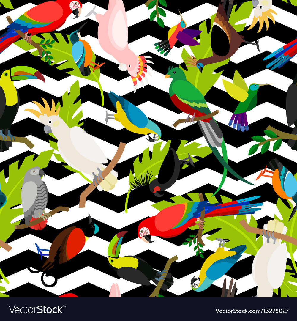 Fashion parrots seamless pattern vector