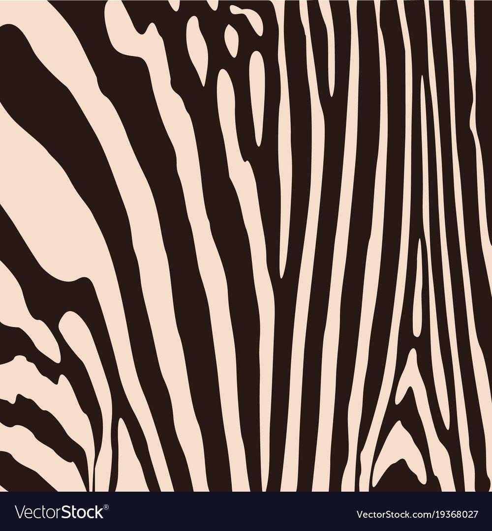 Zebra pattern for wallpaper fabrics designs