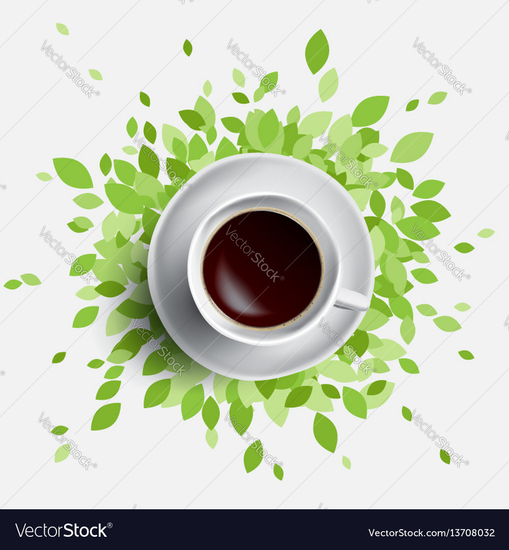 Coffee and green leaves