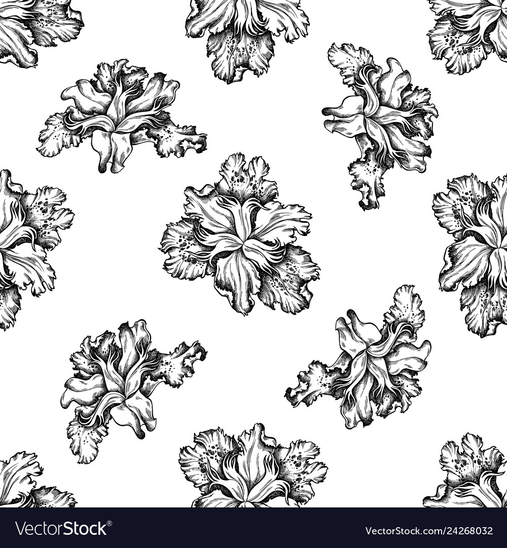Seamless pattern with black and white iris