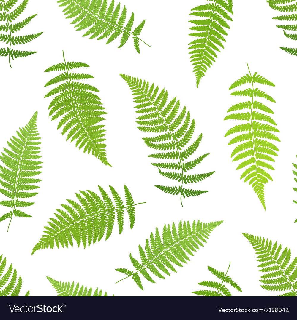 Fern frond silhouettes seamless pattern
