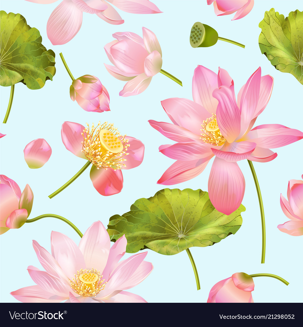 Lotus Flower Pattern Royalty Free Vector Image
