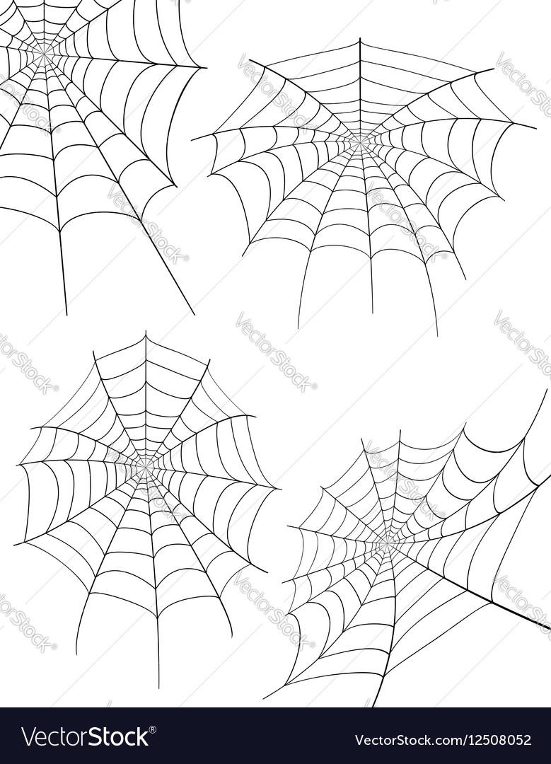 Spider web 05