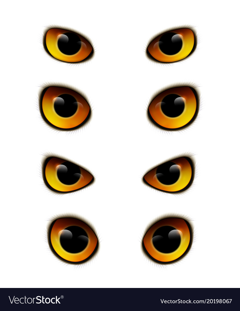 Owl Eyes Realistic Collection Vector Image