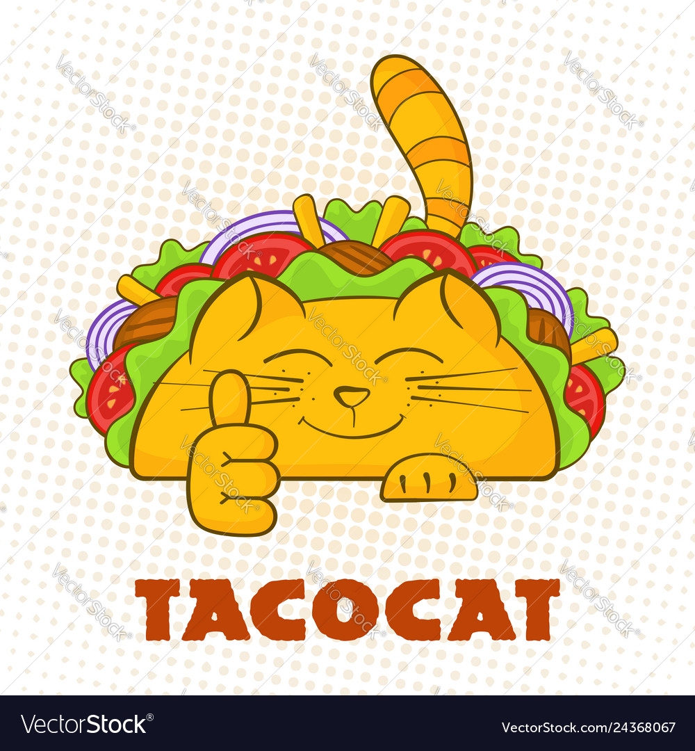 Taco cat cheerful character mexican fast food taco
