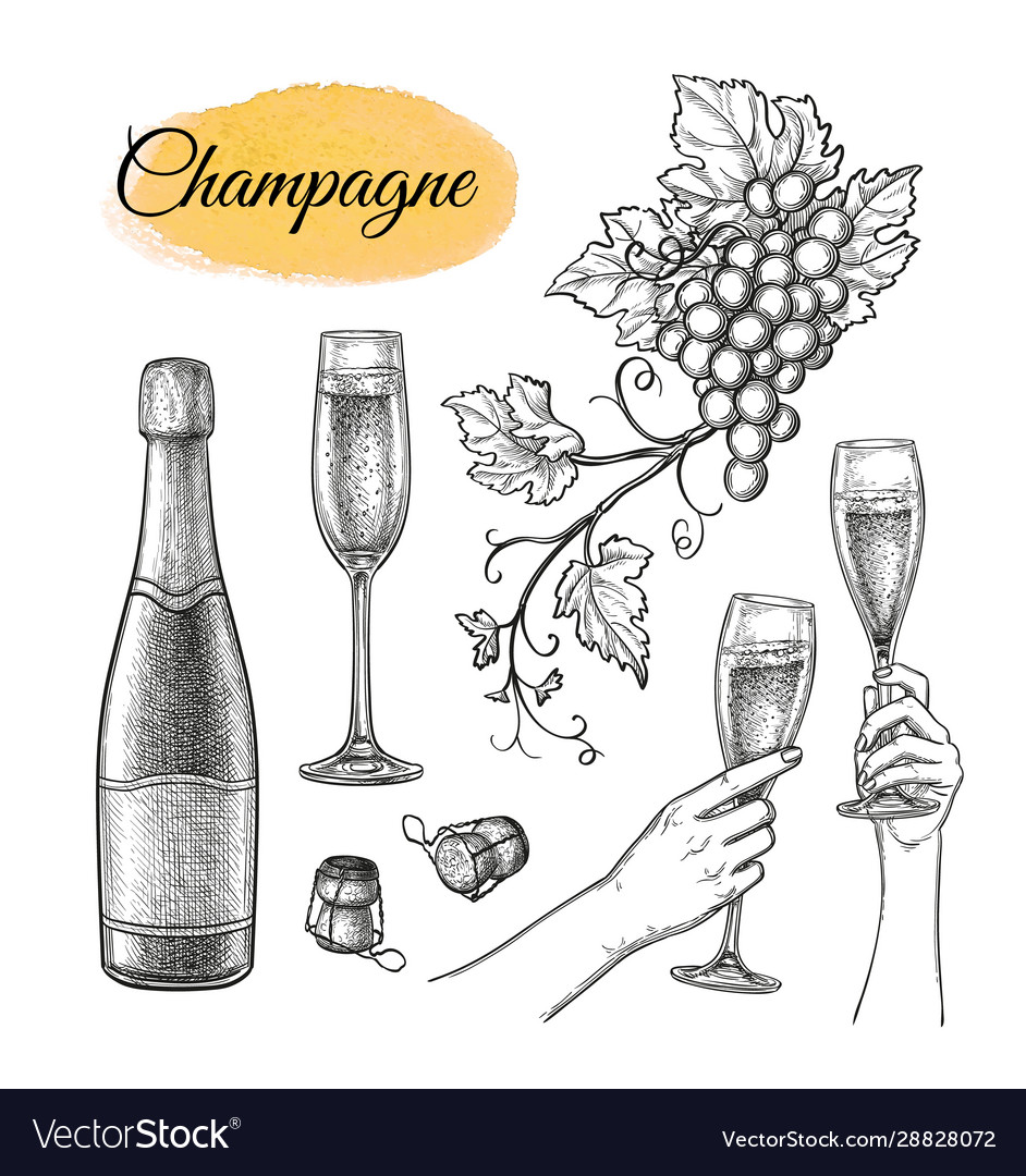 Champagne sketch set