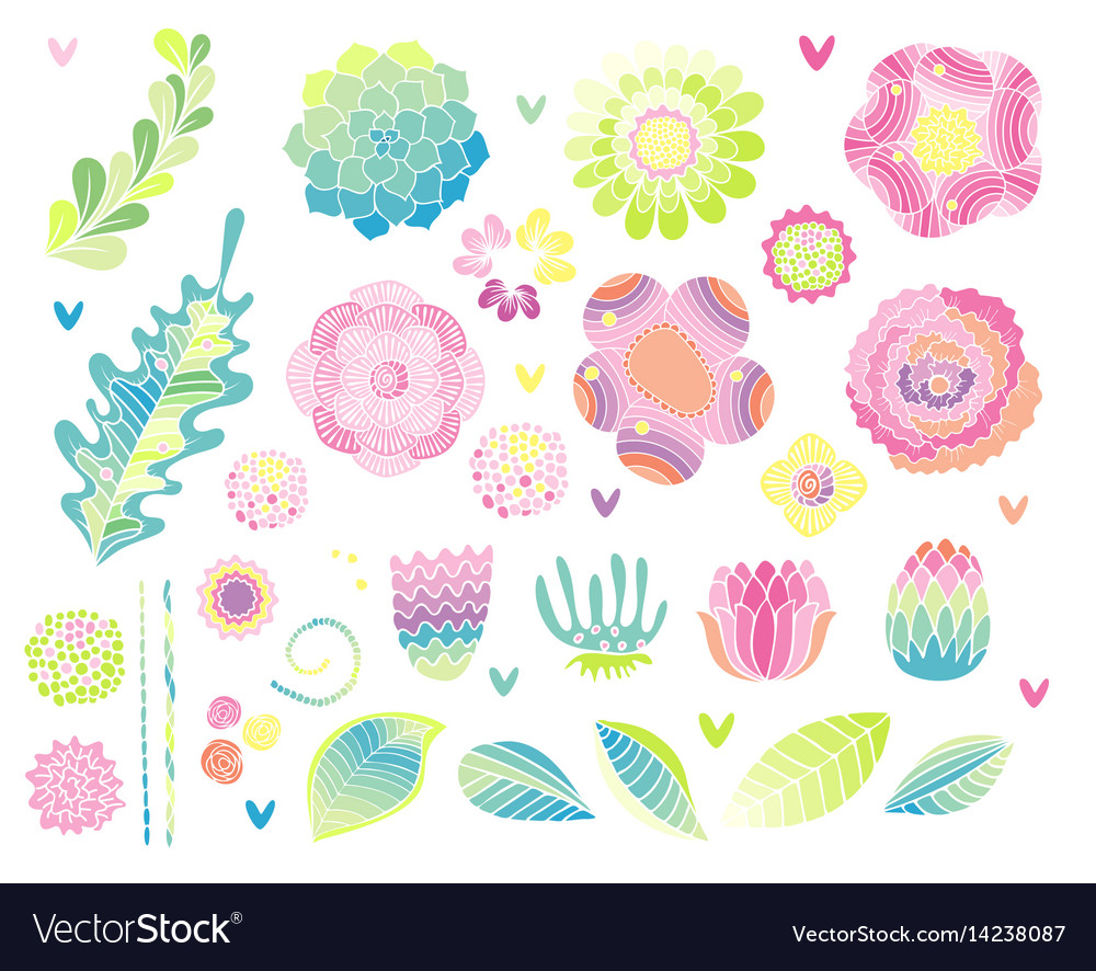 Floral hand drawn set flower elements vector image