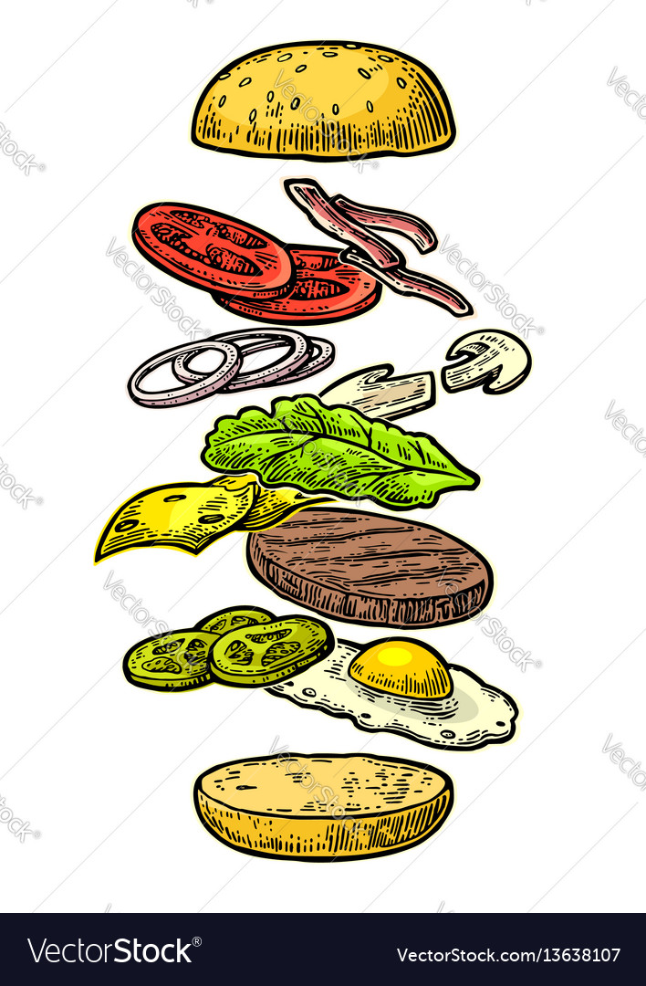 Burger ingredients on white background