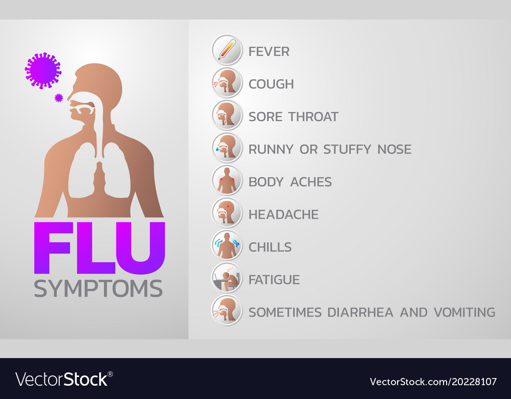 flu symptoms icon design infographic health vector image
