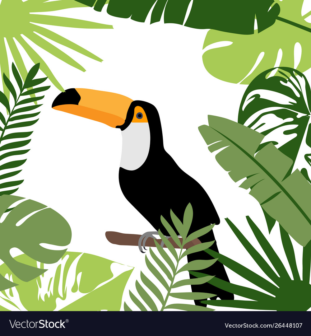 Toucan bird with exotic tropical leaves and