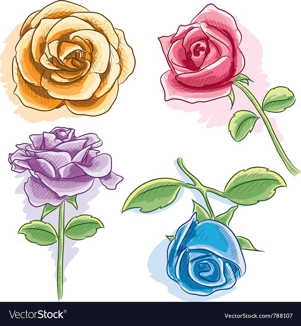 watercolor rose royalty free vector image vectorstock