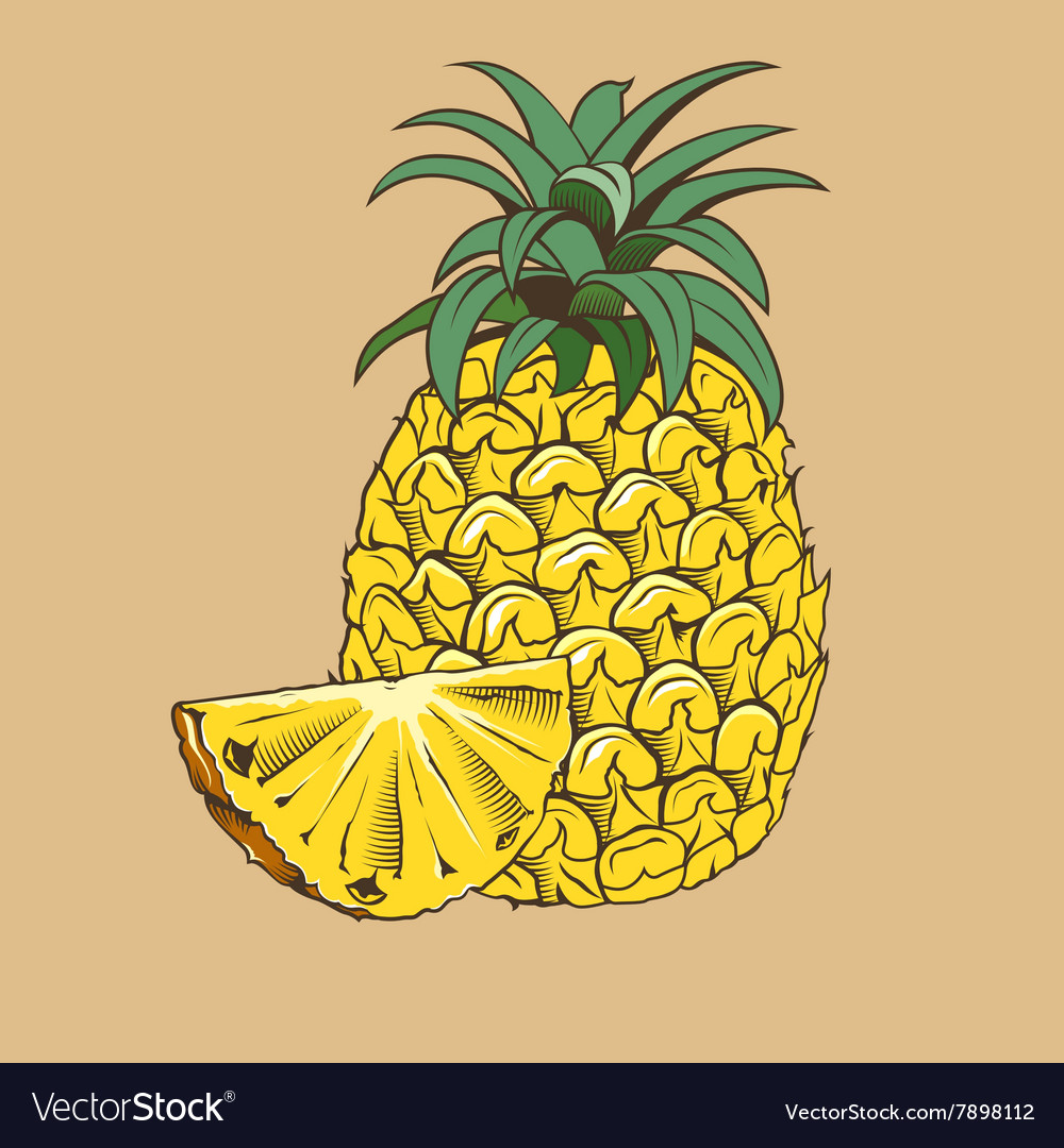 Pineapple in vintage style Colored