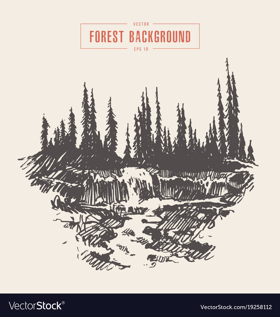 Vintage river waterfall fir forest drawn sketch vector image