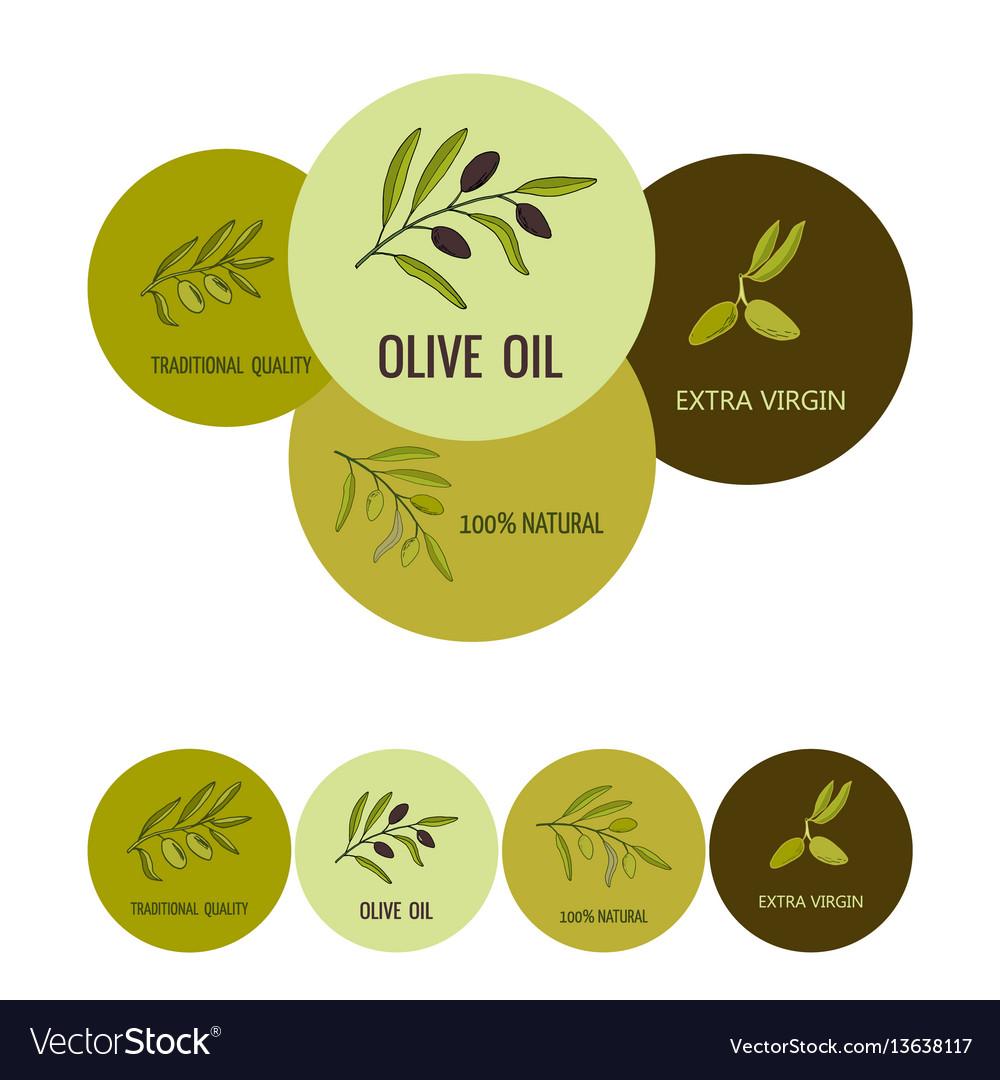 Olive oil labels vector image