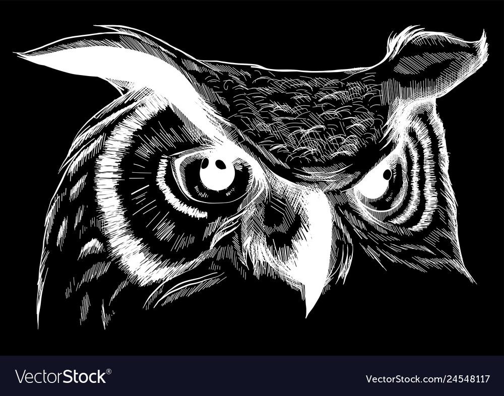 Owl - icon design on black
