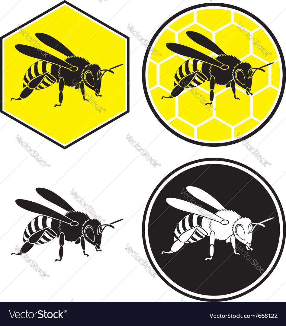 bee royalty free vector image vectorstock rh vectorstock com bee vector icon bronze bee vector logo