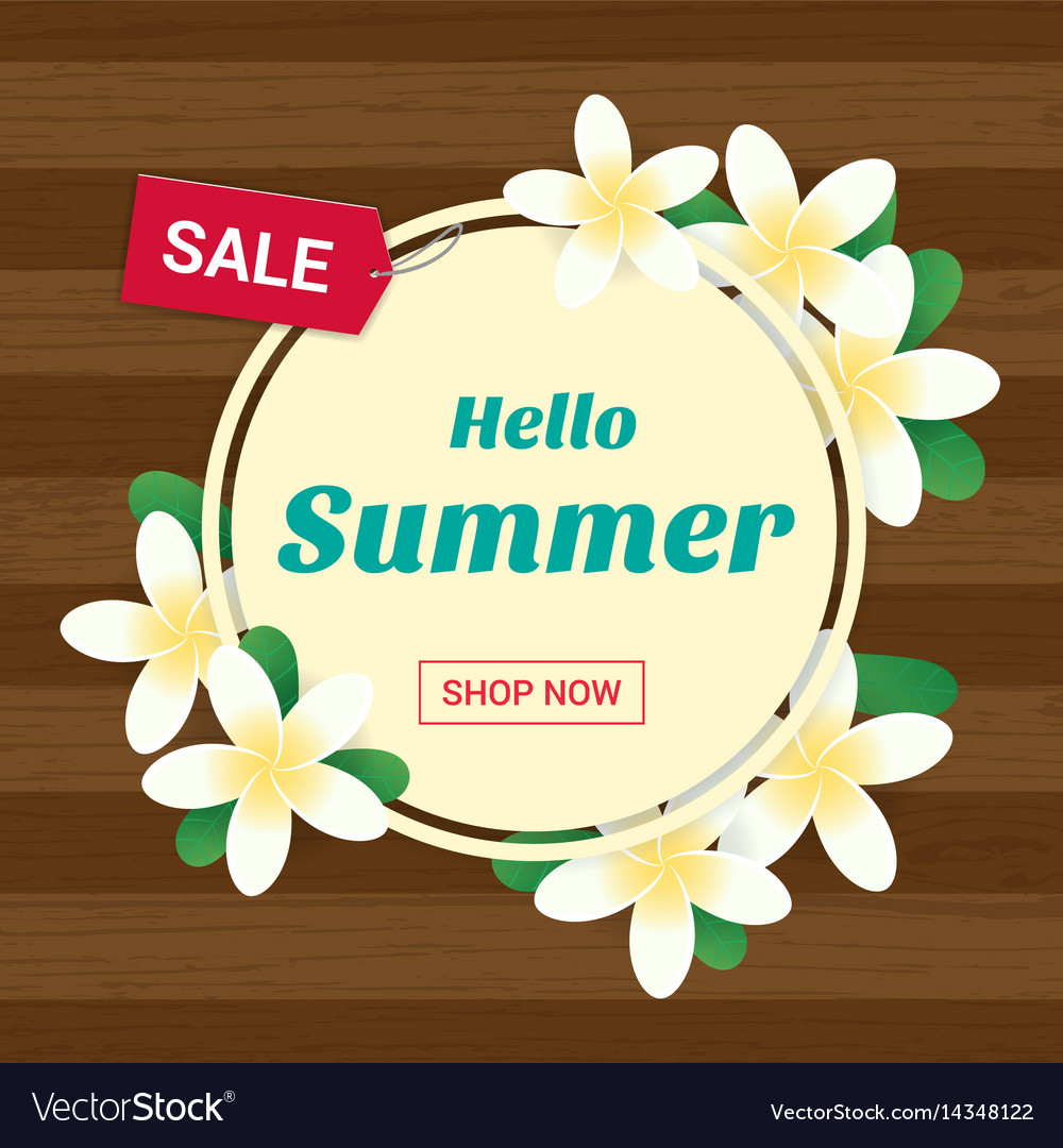Summer greeting season with plumeria flowers vector image
