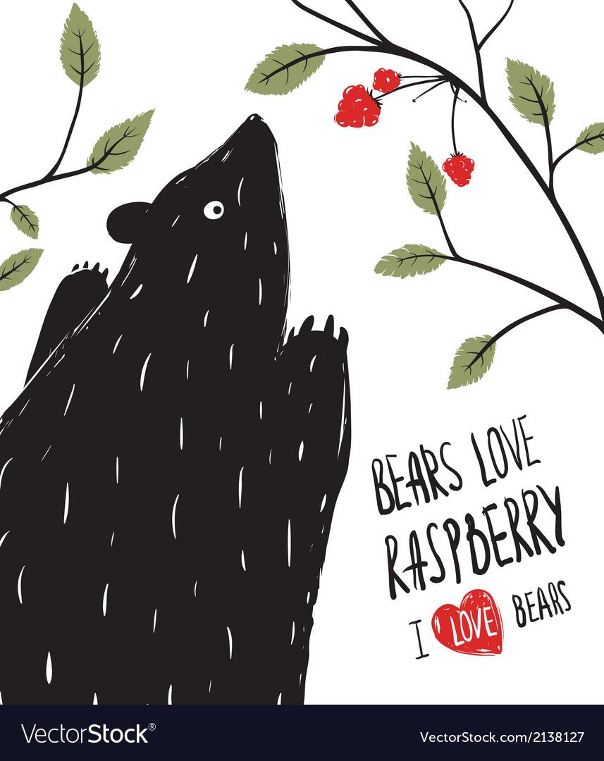 Wild Black Bear Loves Raspberry vector image