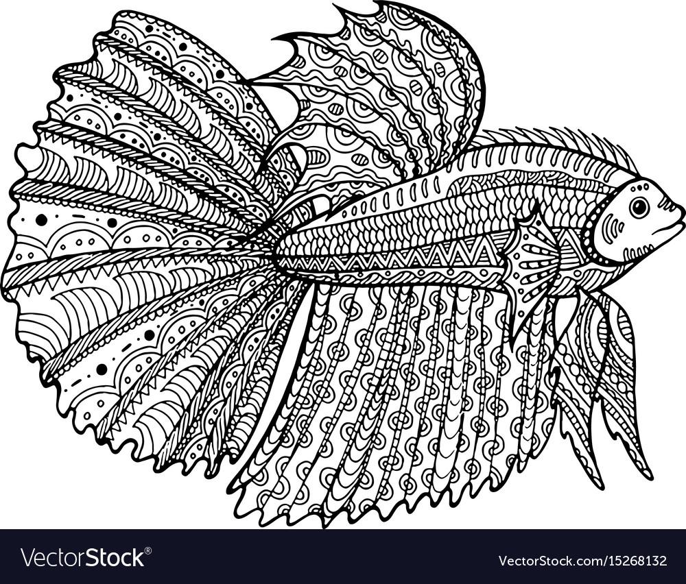 Fish book betta