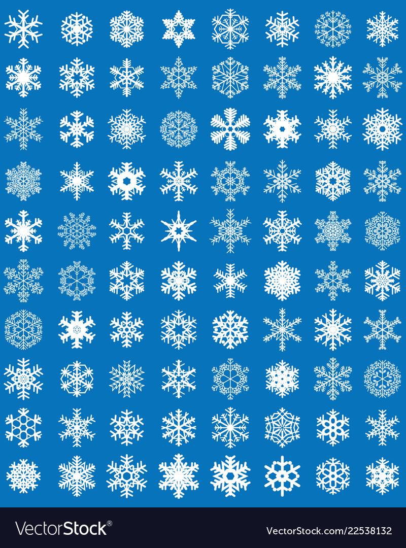Set of different white snowflakes