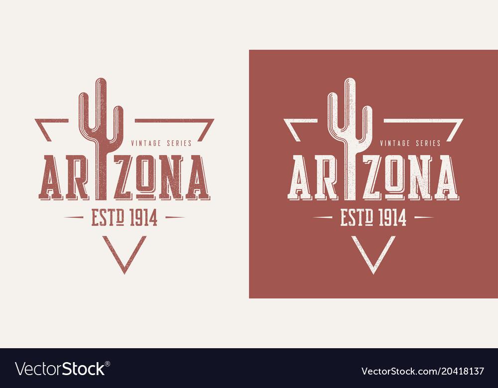 Arizona state textured vintage t-shirt and